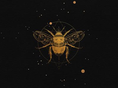Sacred bee black stars geometric illustration sacred space gold bee