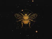 Sacred bee