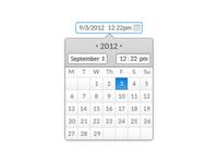 Date//Time Picker