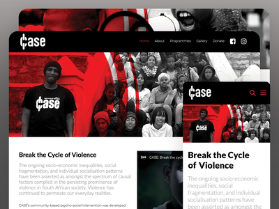 CASE Donation Portal charity wordpress website webdesign responsive photoshop design creative direction cms