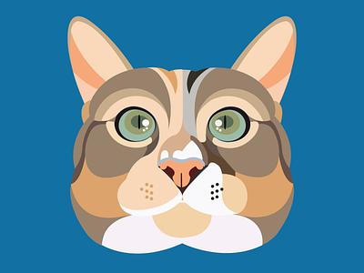 Cat Illustration versatile design illustration illustrator unique vector modern flat