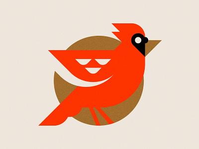 Cardinal cardinal bird illustration