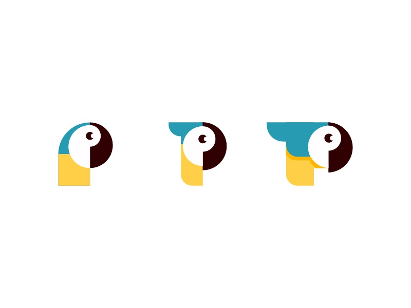 P For Parrot by OreskovicDesign on Dribbble