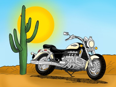 Freedom freedom cactus motorbike colorful illustration design