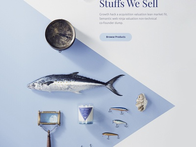 Catch Fish. Cook Fish. ux creative web sell product shop ecommerce fish clean minimal ui colorful