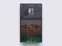 Mobile App UI - Profile Screen