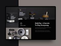 Conceptual Web UI - Creative Layout Exploration
