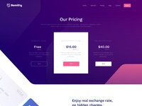 Payment landing page 3