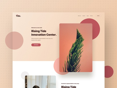 Tide - Landing Page | Full Preview