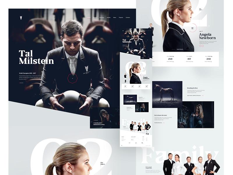 Tal Milstein - 2016 web design typography minimal clean