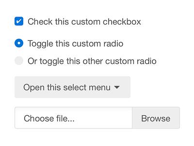 Custom form controls css html blue gray white helvetica neue