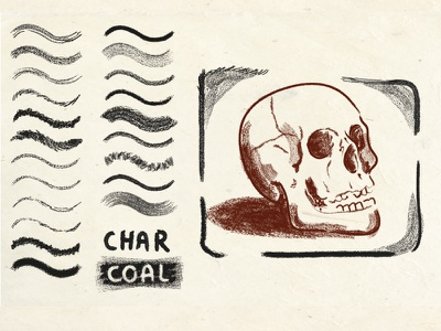 Charcoal Brushes vector brush illustrator brush drawing skull illustration charcoal texture vector brushes