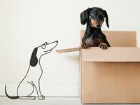 Happy Dogs Illustrations