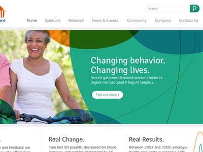 Image System/Website Design image system website