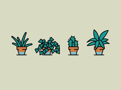 House plants vera aloe lily peace ivy cactus vector simple illustration plants house