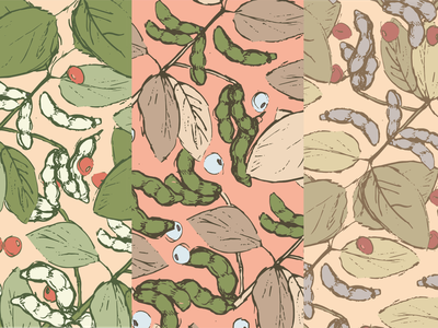 Soybean Pattern textile colorways farming nature pattern art soybeans pattern designer pattern design pattern vector