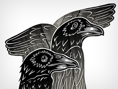 the letter A raven bird crow typography letter illustration datamouth