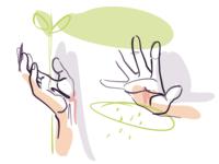 🌱 Nurturing ✋