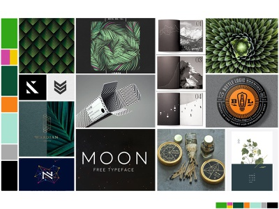 Identity Moodboard: Sophisticated Nature moodboard color pallet color nature mood board inspiration branding