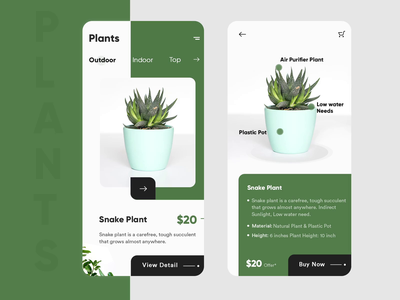 Plant Shop App app ui green app design after effects animation uidesign landing page website design webdesigner after effects ui clean  creative modern design clean branding