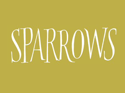 Sparrows roman sparrow calligraphic pointed brush calligraphy brush brushlettering handlettering