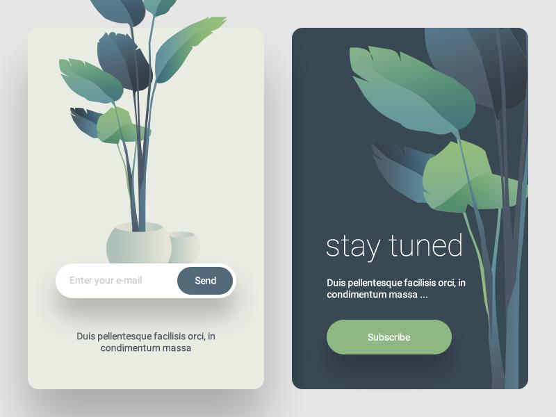 Subscribe Page vase plant illustration ux ui minimal leaf subscribe