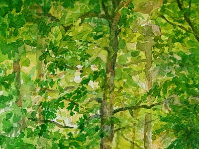 Árboles en el parque árboles acuarela