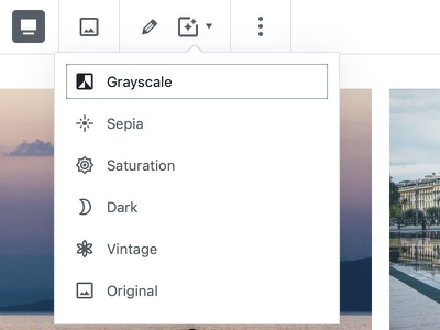 Block Gallery: Apply Image Filter theme wordpress block gallery photo website design minimal clean gutenberg