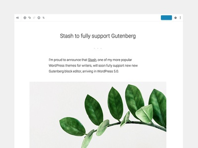 Stash editor support stash compatible gutenberg blog minimal themebeans clean theme wordpress