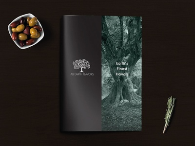 Earthflavors Brochure olive oil extra virgin olive oil design olive oil branding logo design logotype logo greece