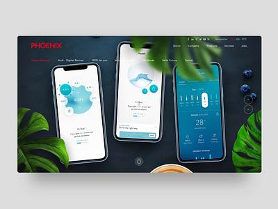Water Balancer - Webstory story water aftereffects web app website ux ui animation design