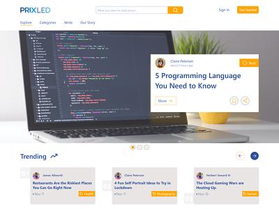 Landing Page branding article page blog landing page design illustration ui adobe xd