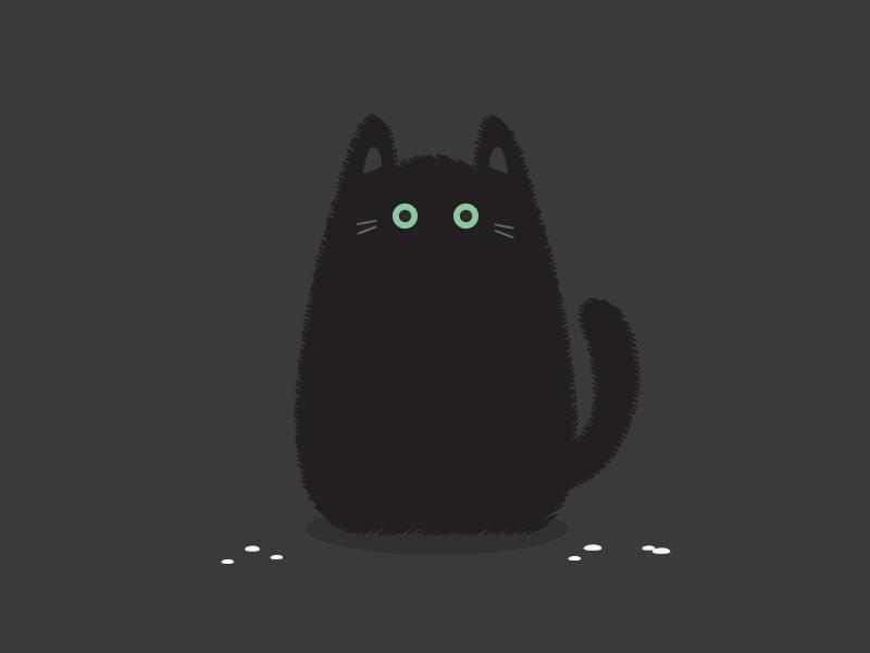 Poor wet cat bad luck water green eye cat black