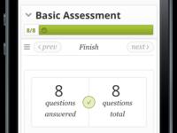 Assessment Mobile Finish 1