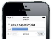 Assessment mobile finish 2