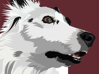 Daisy the border collie illustration pet portrait digital art adobe illustrator vector
