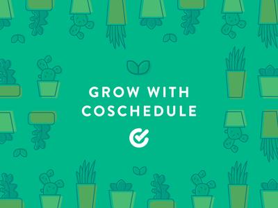 CoSchedule Facebook Ads