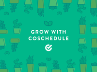 CoSchedule Facebook Ads