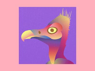 Vulture profile pic colors birds graphic design graphism animals profile picture social medias logotype logo illustrator illustration profile pic vulture