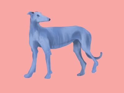 Blue Hound animals blue dog dog minimaliste digital painting painting illustration