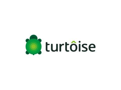 Turtoise logo design logo logo design design logo designer green turtle tortoise turtoise turtles nature natural children