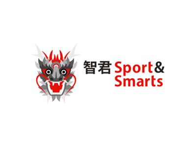 智君 Sport & Smarts logo design tai chi dragon chinese china traditional sports smarts training program tae kwon do chess logo logo design