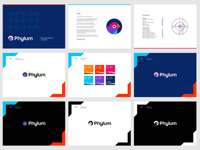 Phylum logo guidelines: logo construction, white space, colors tech finch bird cybersecurity online cyber apps developer software security brand manual branding guidelines logo design logo
