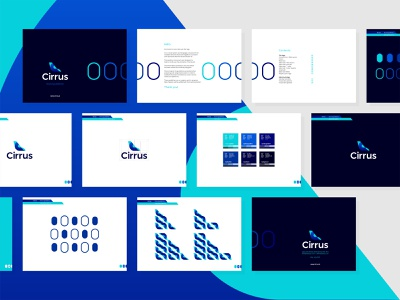 Cirrus flights ticketing ai: logo, identity, brand guidelines bird tail fin web style guide airlines aviation flights pricing tickets ticketing ai artificial intelligence business intelligence deep learning logo logo design logomark revenue management brand manual brand guidelines airplane data