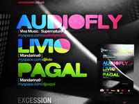 Audiofly poster design detail