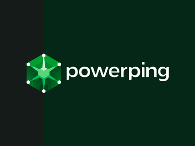 PowerPing server software monitoring system logo design networking network branding identity design flat 2d geometric vector icon mark symbol logo design logo it server software security monitoring system graphs charts logs entries online data apps client cloud applications connections stats statistics digital information technology electronic web performance tools