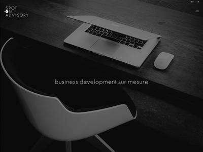 Logo and web design : Spot on advisory accueil logotype web design