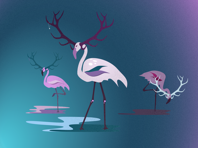 Flamingo illustrator flamingo vector design illustration