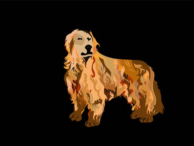 DOG Vector 01 dog illustration dog art floral pattern illustration art illustrations illustrator typography advertising vector branding design illustration