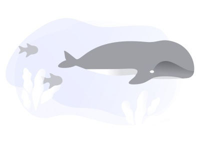 Pathgather Following purple underwater gray ui web color empty state design branding whales illustration simple